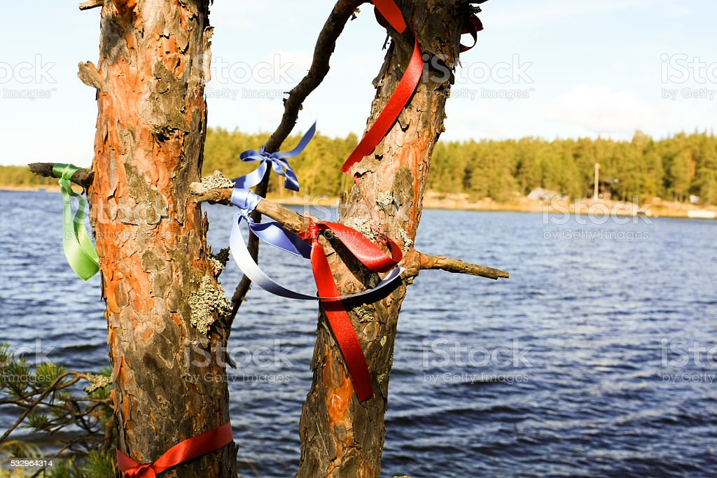 ribbons on a tree trunk stock photo