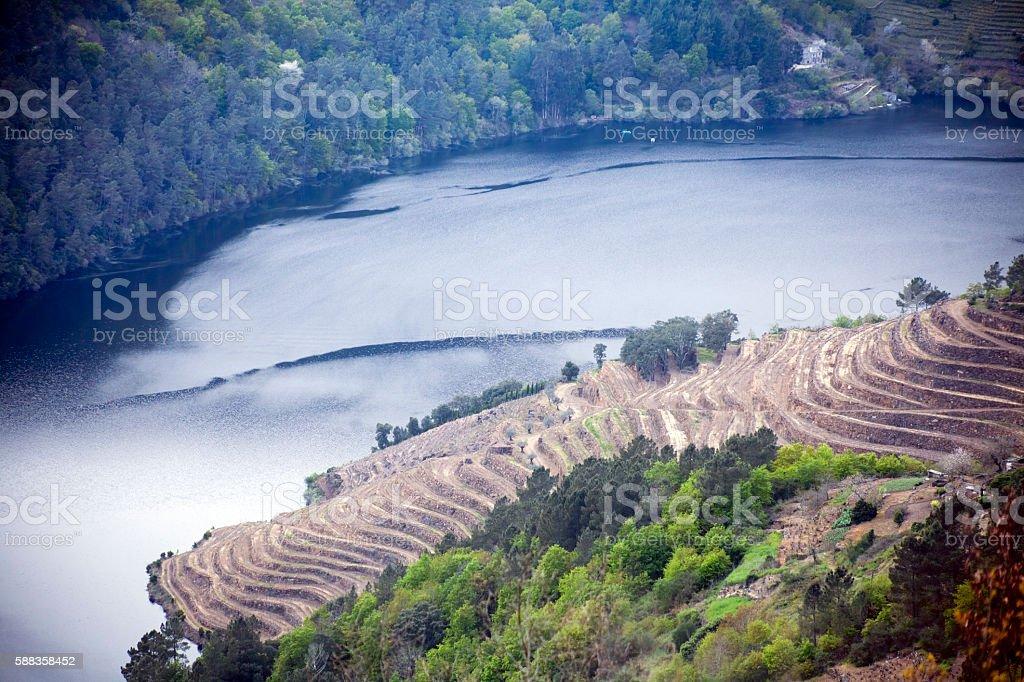 Ribeira sacra terraces for vineyards by river Miño, Galicia, Spain. stock photo