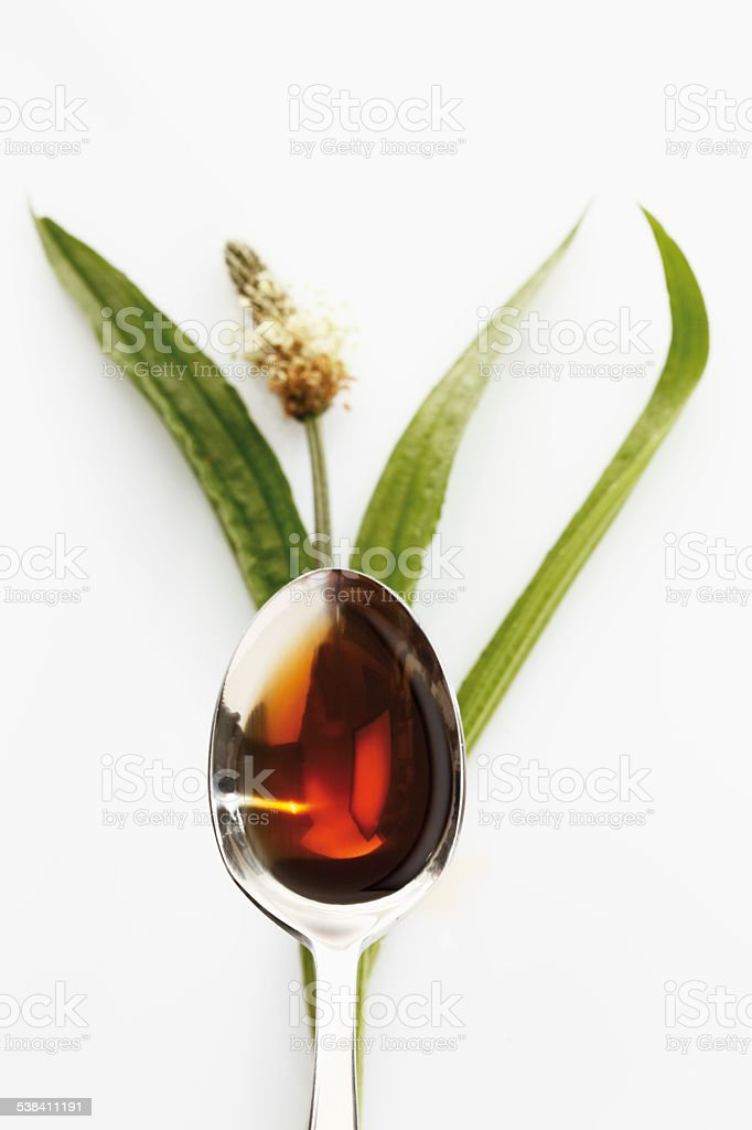 Ribwort plantain with spoon of cough syrup on white background stock photo