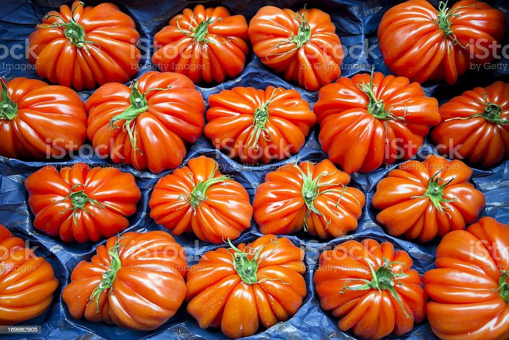 Riccio Fiorentino tomatoes royalty-free stock photo