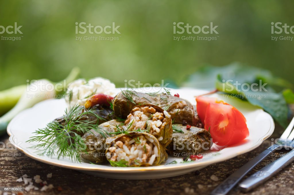 Rice and minced meat wrapped in grape vine leaves stock photo