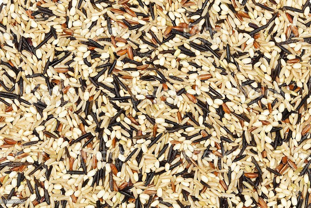 Rice Background XXXL stock photo