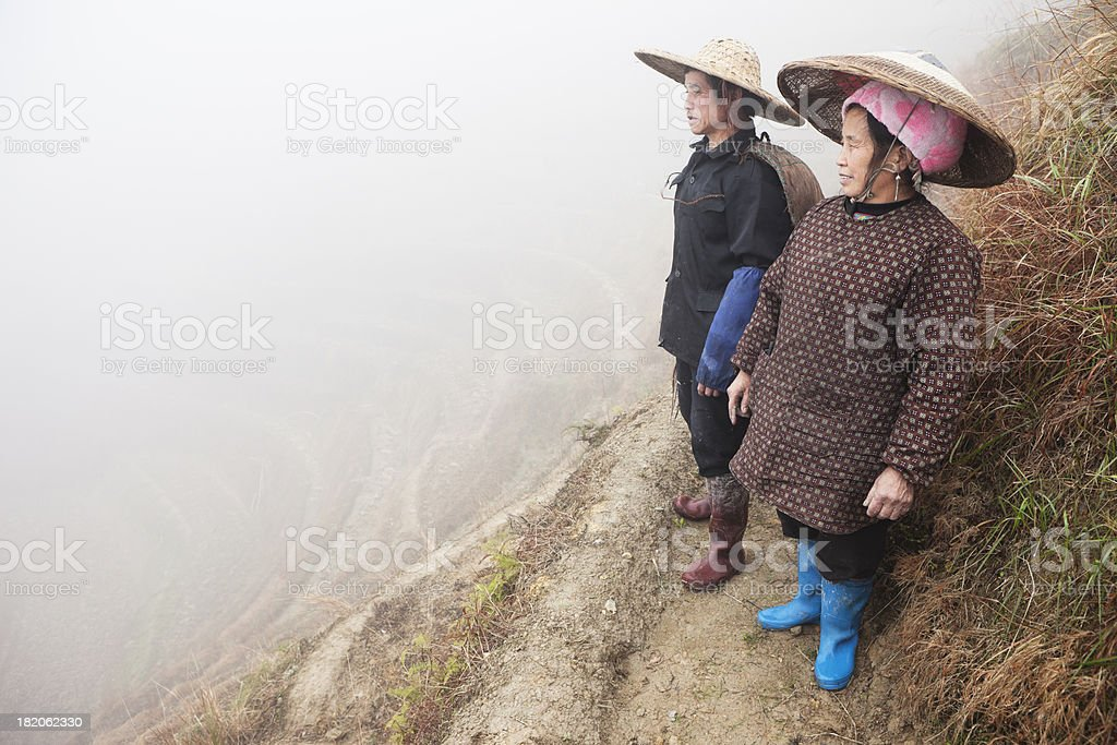 Rice Farmers On Paddy Fields, China stock photo