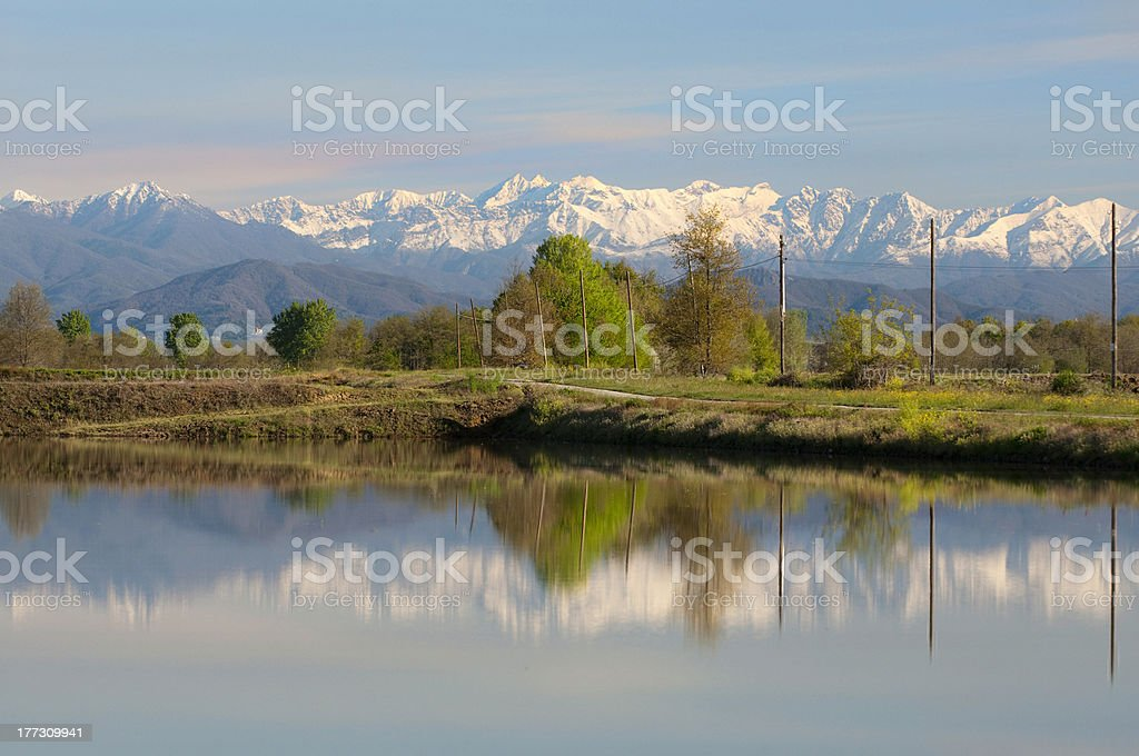 Rice field and mountains stock photo