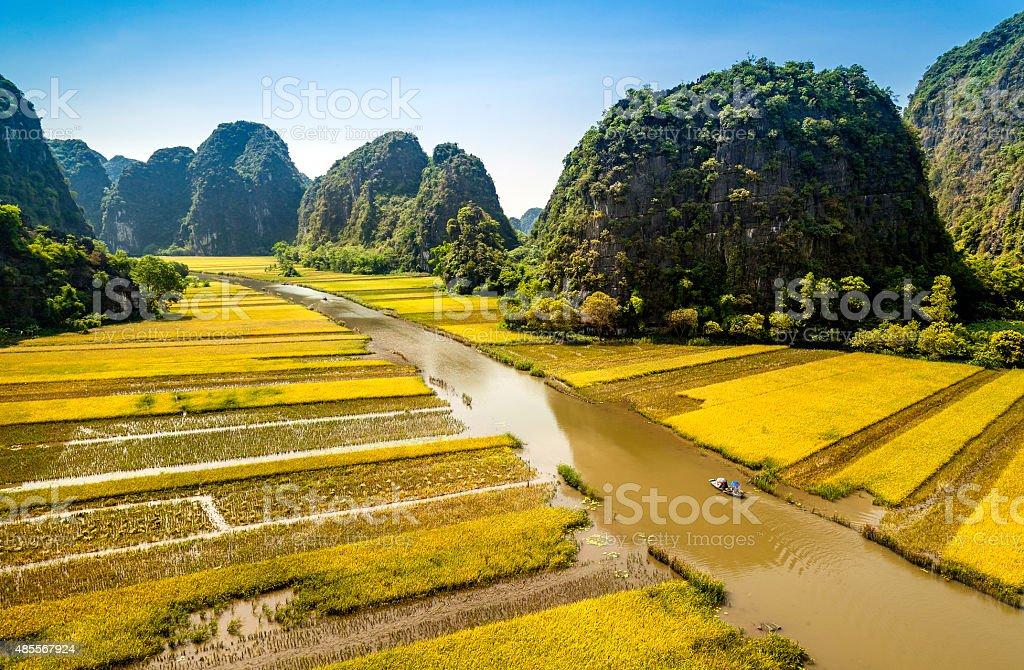 Rice field and river in TamCoc, NinhBinh, Vietnam stock photo