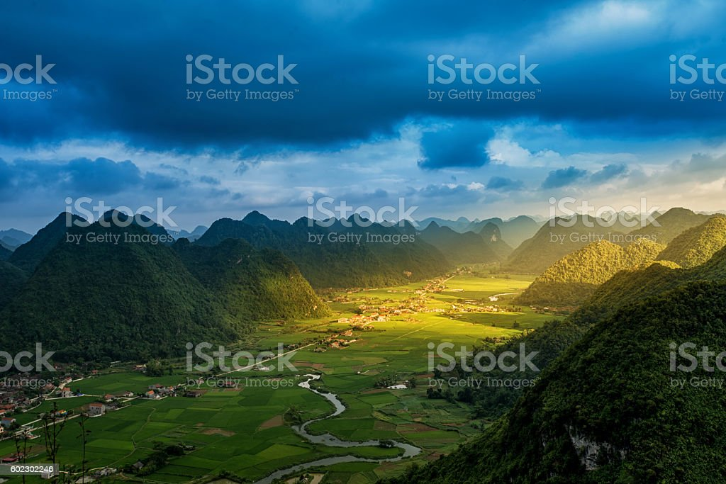 Rice field in valley around with mountain panorama view stock photo