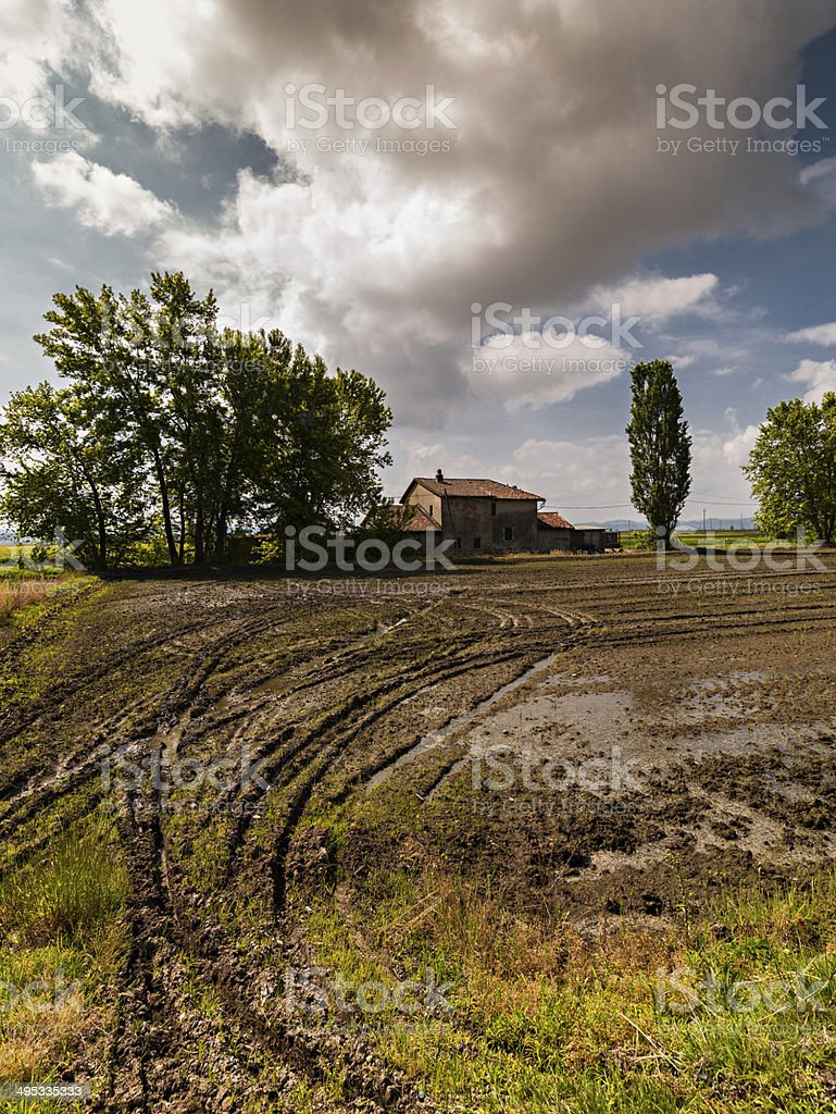 Rice fields with clouds. Livorno Ferraris, Piedmont, Italy stock photo