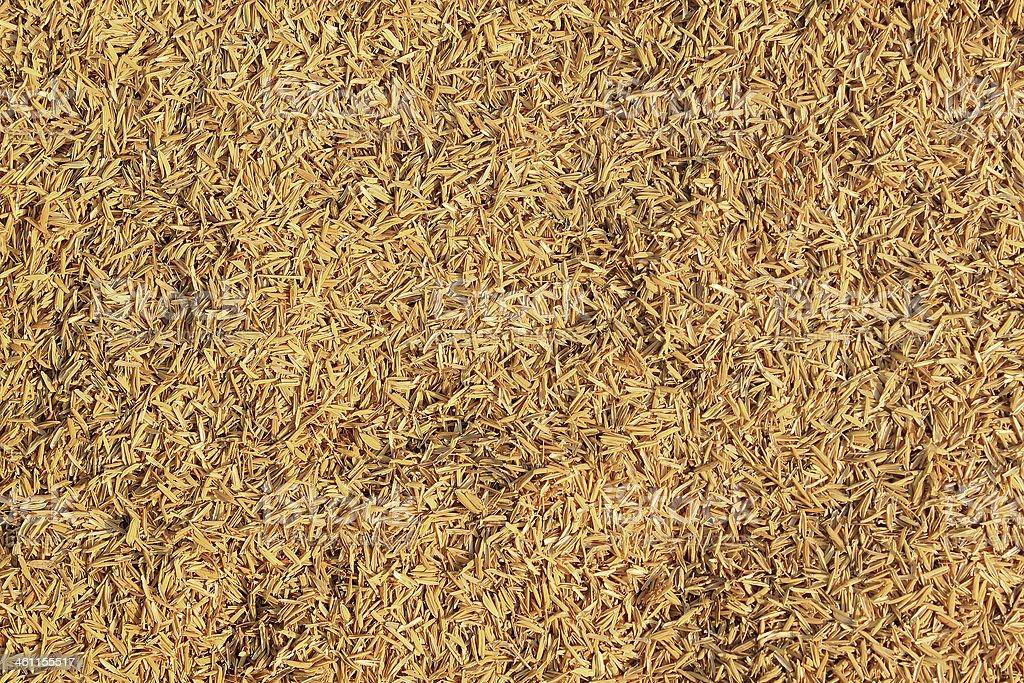 Rice Husk stock photo
