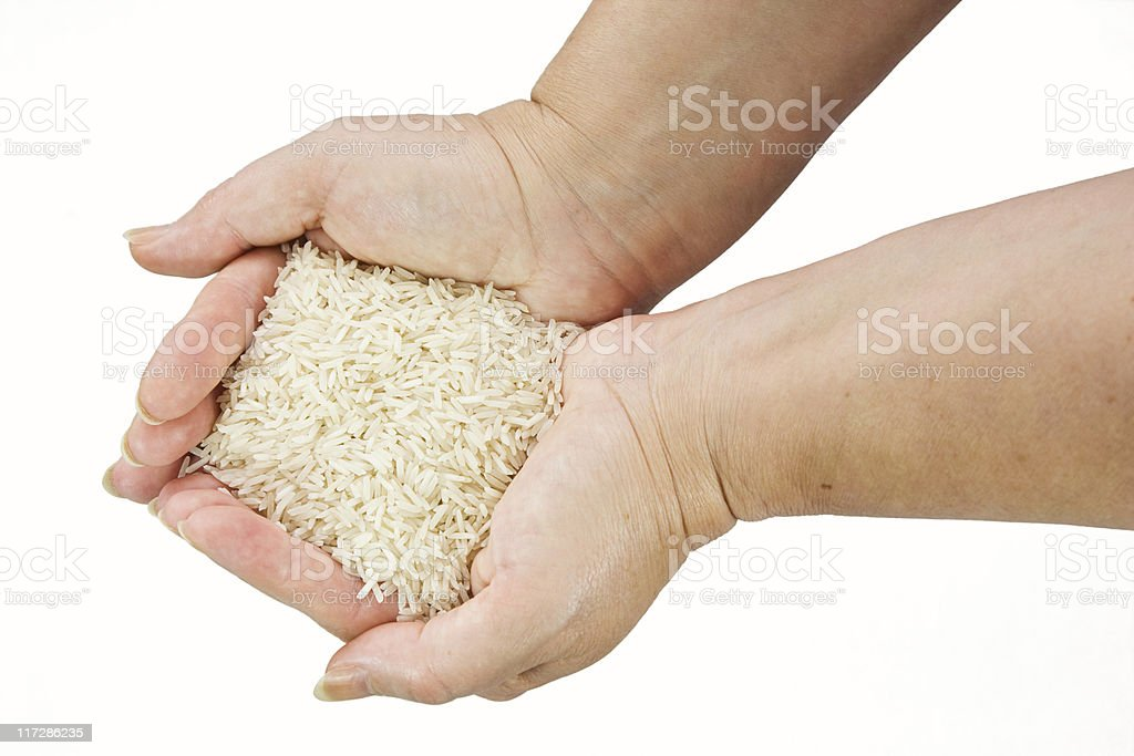 Rice in the Hands royalty-free stock photo