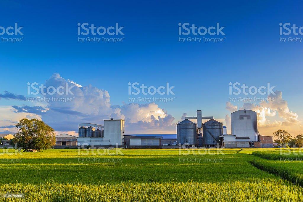 Rice mill stock photo
