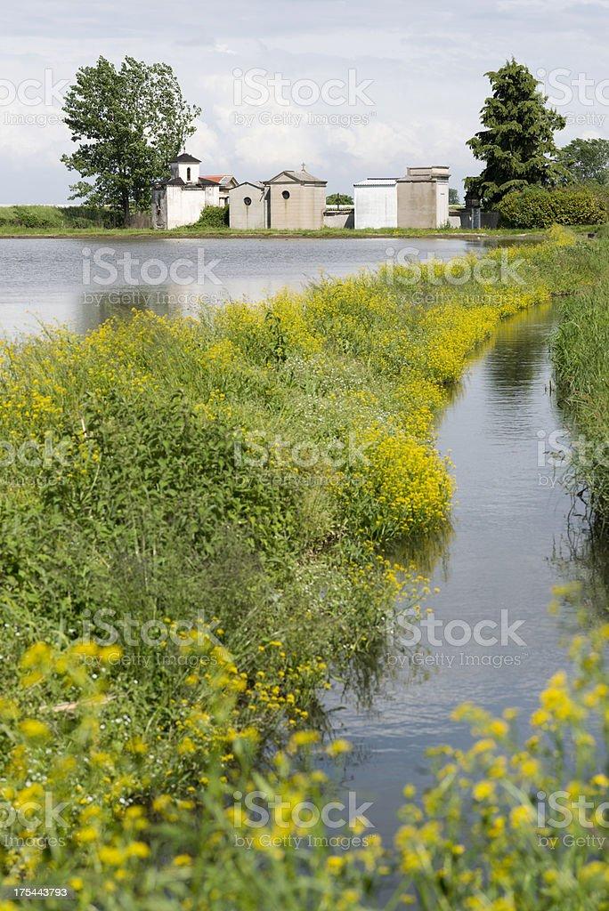 Rice Paddy, Piedmont, Cemetery stock photo