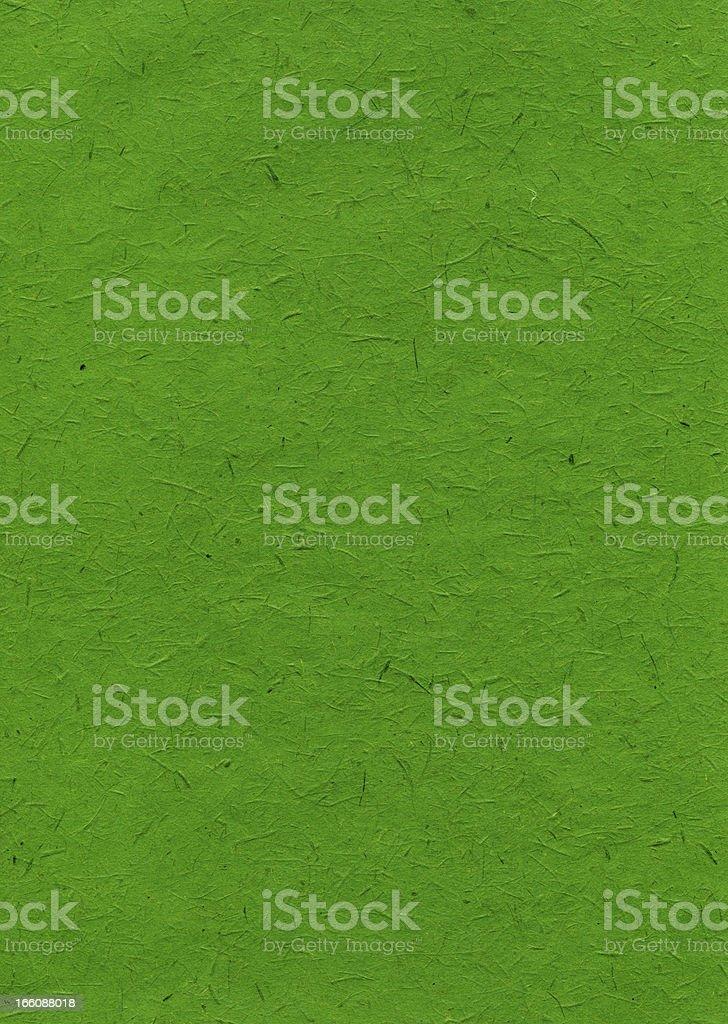 Rice Paper Texture - India Green XXXXL royalty-free stock photo