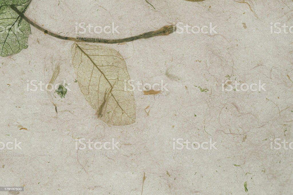 rice paper texture royalty-free stock photo