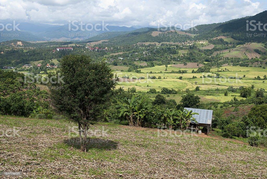 Rice terrace - Chang Khoeng, Mae Chaem, Chiang Mai, Thailand stock photo