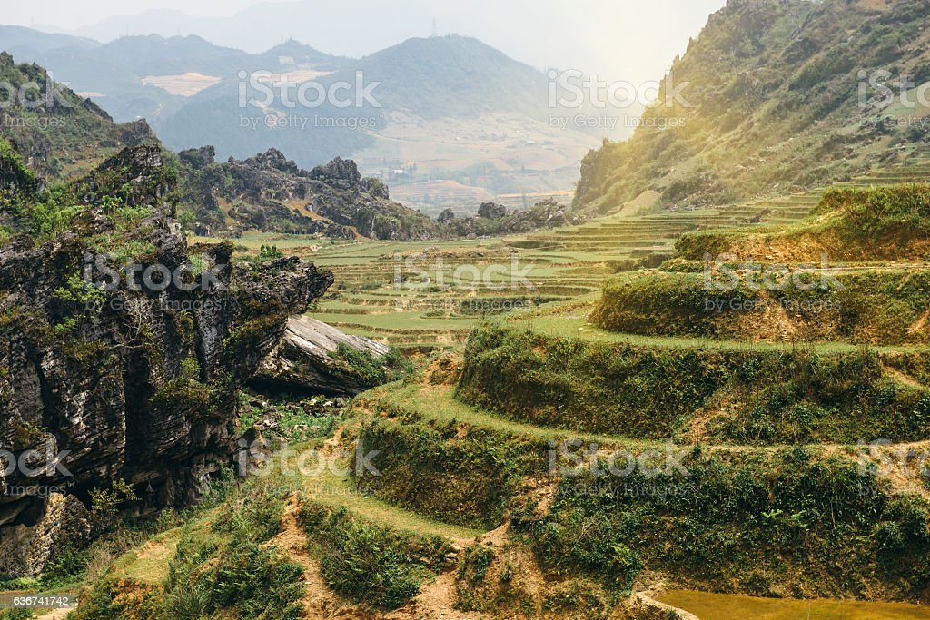 Rice terraces and hills in Sapa, Vietnam. stock photo