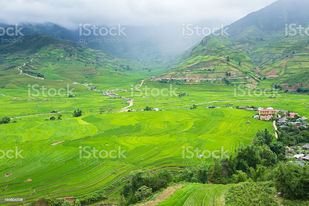 Rice terraces field in Rainning season stock photo
