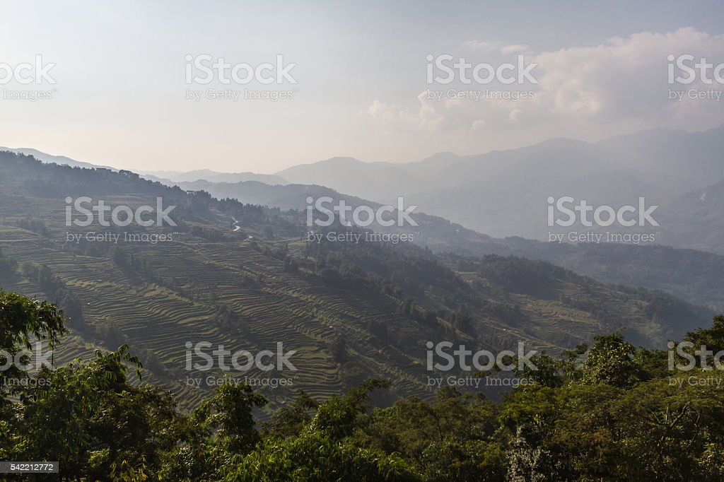 Rice terraces in Yunnan province stock photo