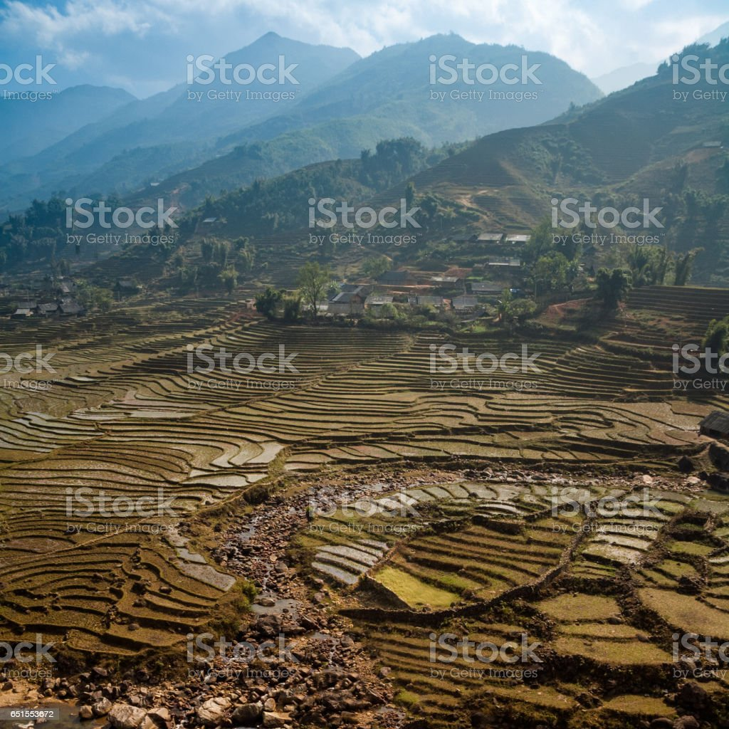 Rice Terraces Near Sapa In Northern Vietnam stock photo
