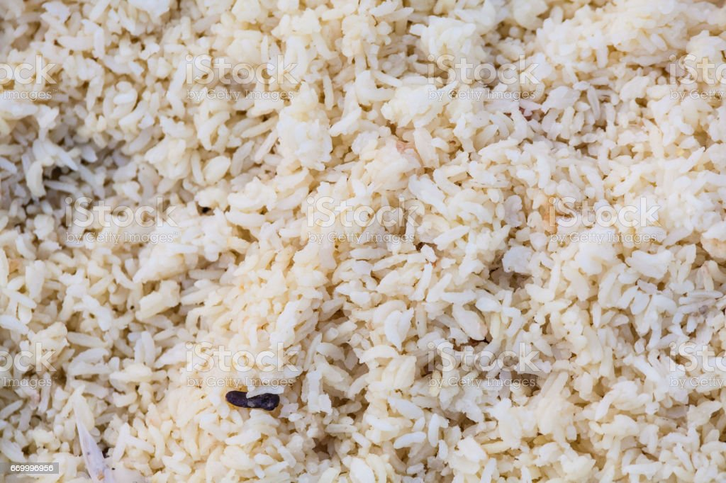 Rice texture for blur background stock photo