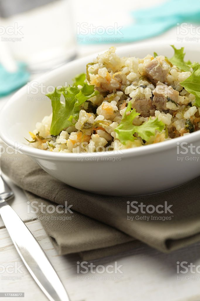 Rice with pork, carrots and spinach royalty-free stock photo