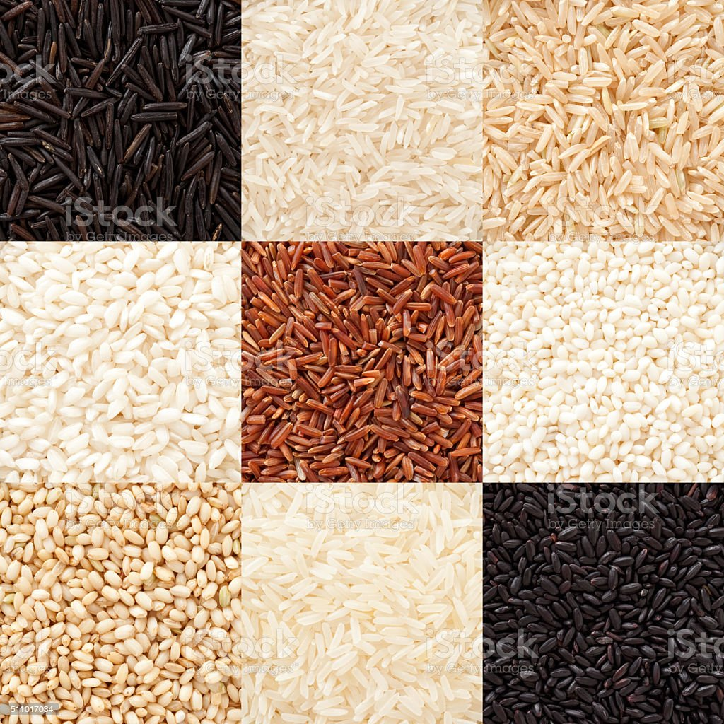 Rices composition stock photo