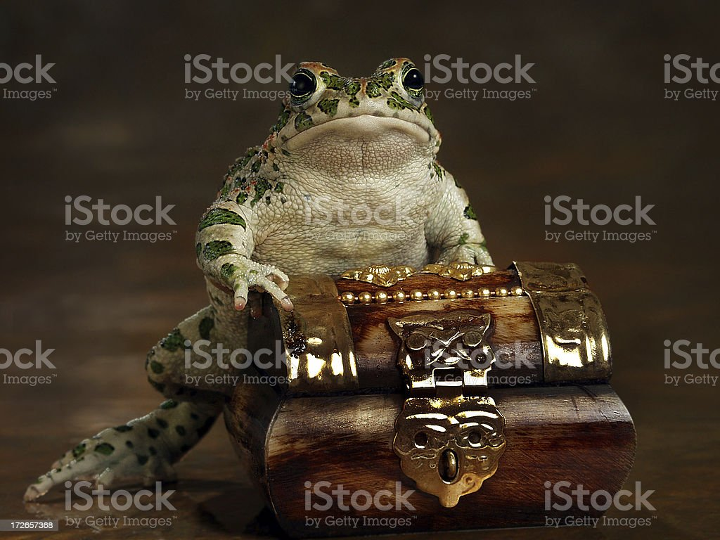 Rich Froggy royalty-free stock photo