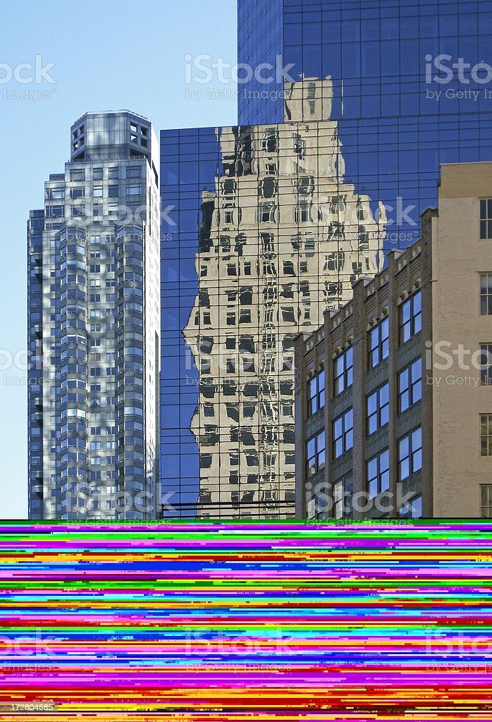 Rich Pooches in New York City royalty-free stock photo