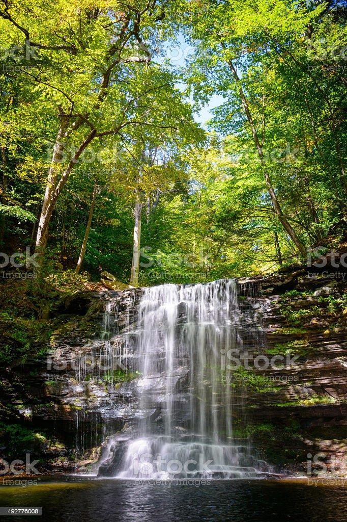 Ricketts Glen State Park stock photo