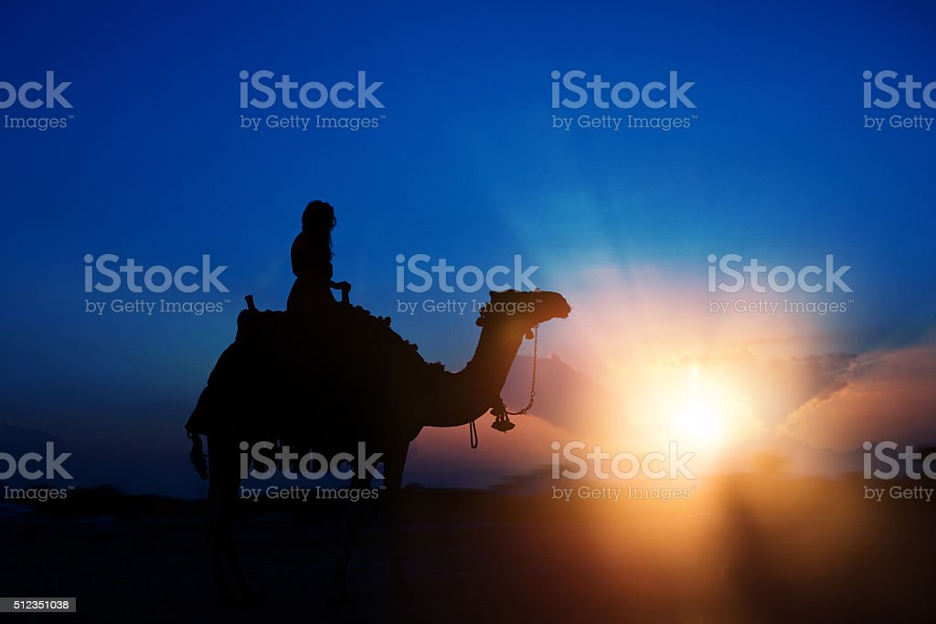ride with the camel at sunset stock photo