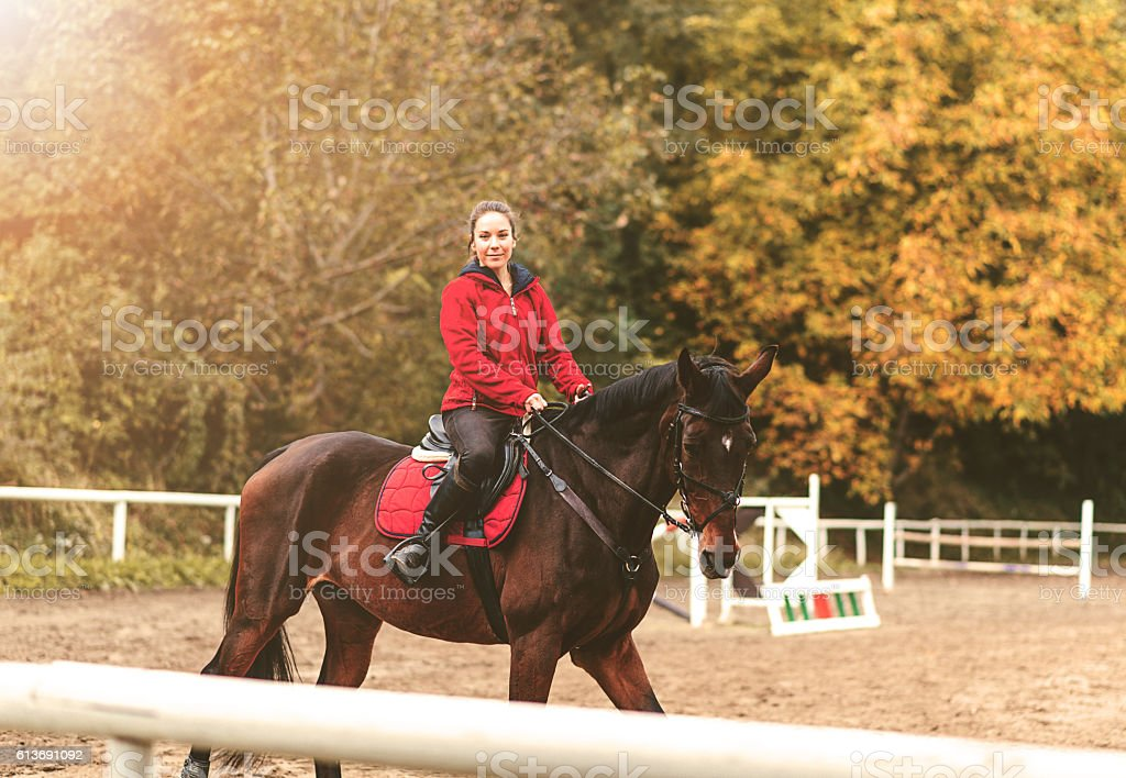 Rider and horse on show jumping area stock photo