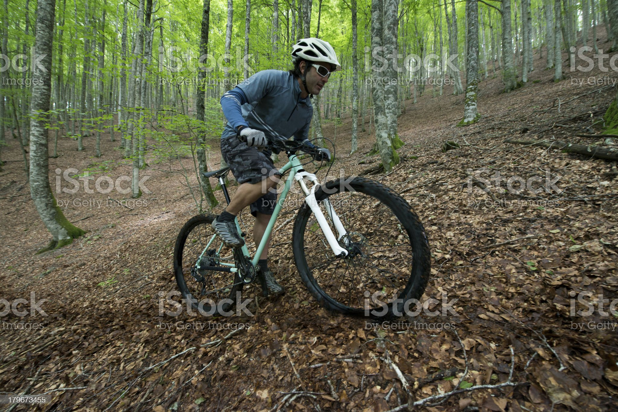 Rider in action royalty-free stock photo