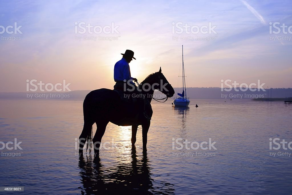Rider on a horse at sunrise royalty-free stock photo