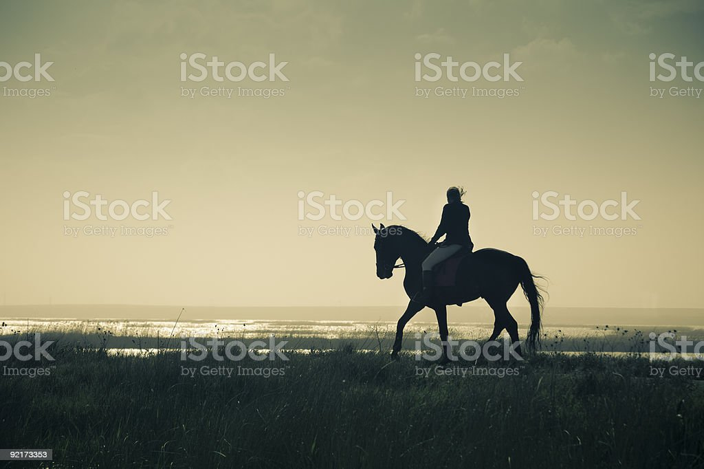 Rider Silhouette on Horseback / split toned stock photo