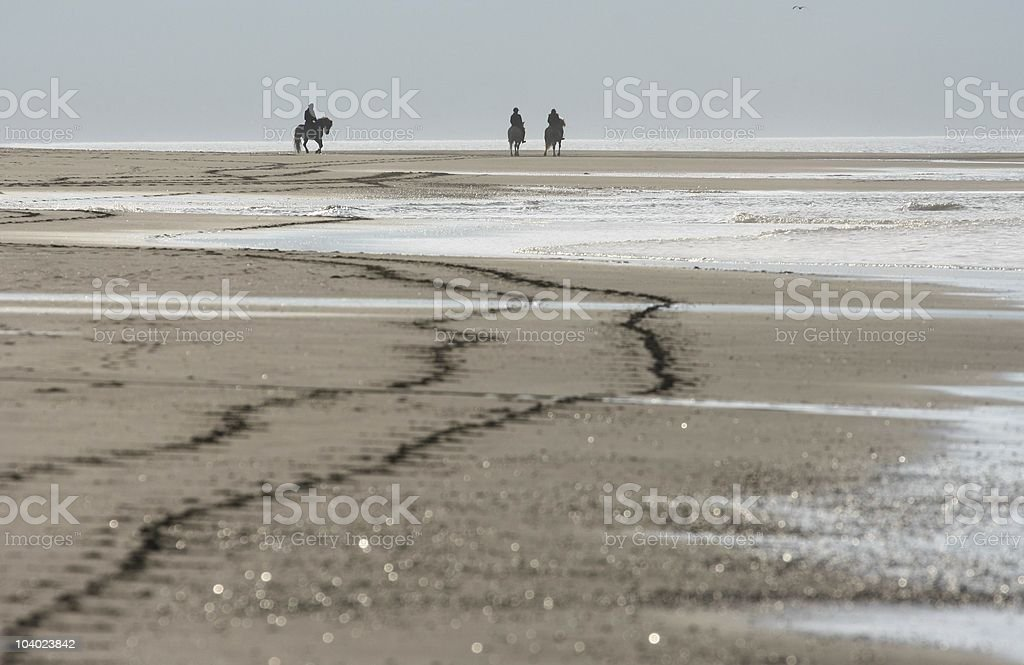 riders at a beach stock photo