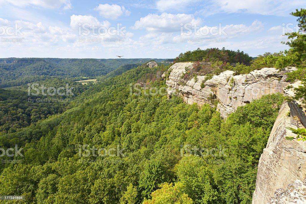 Ridge Top View royalty-free stock photo