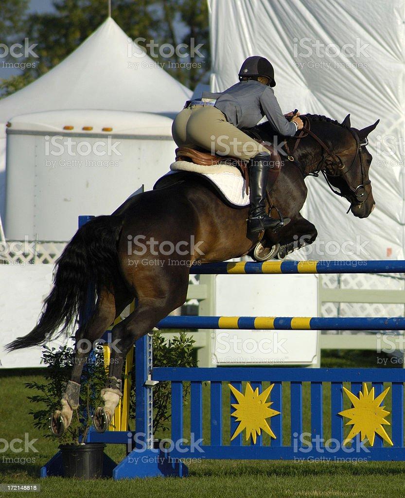 Riding a horse royalty-free stock photo