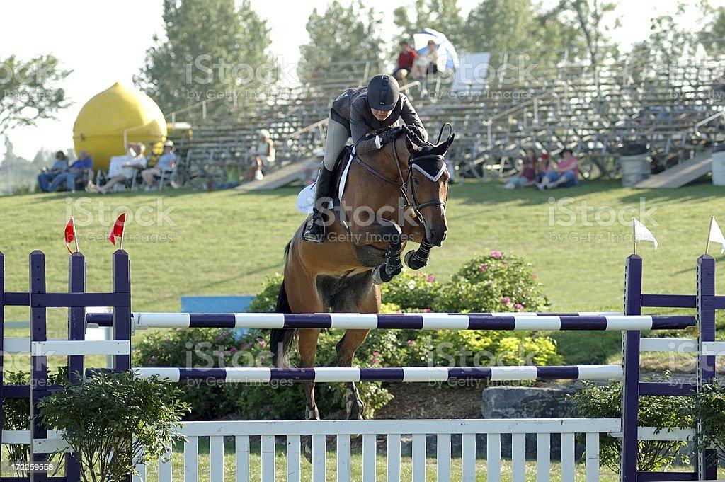 Riding a horse stock photo