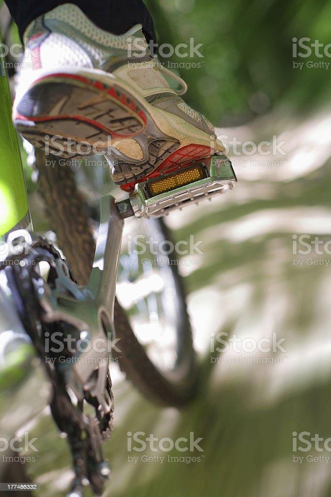 Riding a mountain bike stock photo