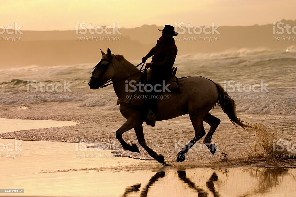 Riding against the light royalty-free stock photo