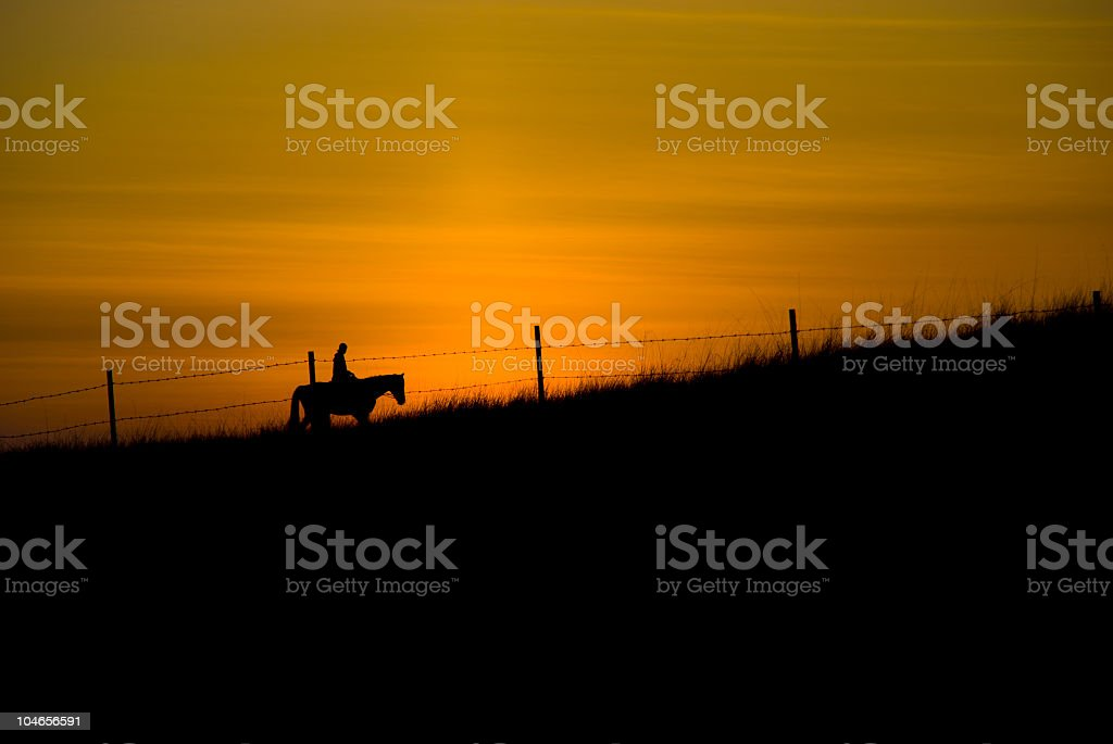 Riding Fences royalty-free stock photo
