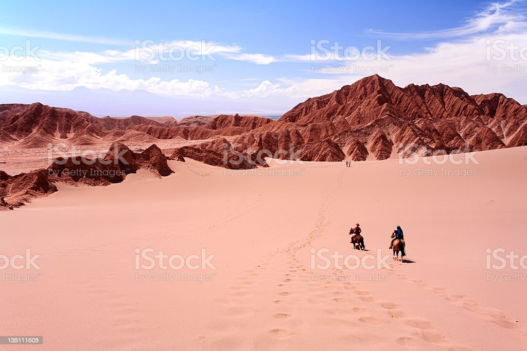 Riding Horse, Vale de la Luna - Atacama Desert, Chile royalty-free stock photo
