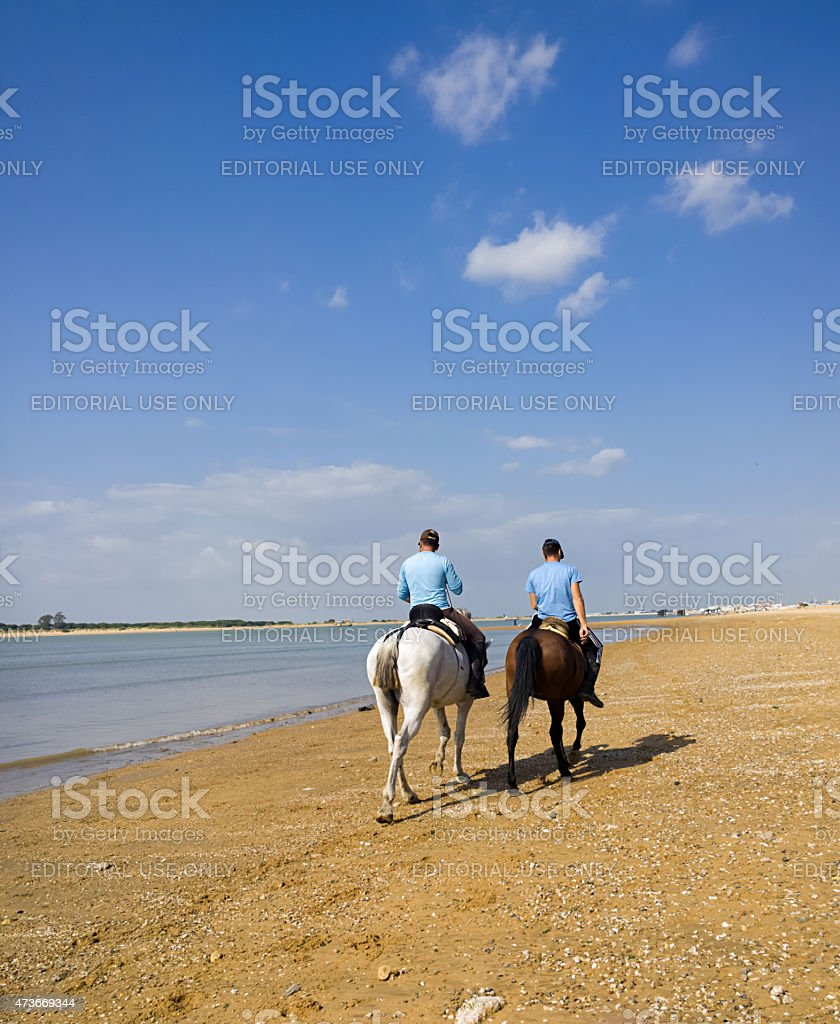 Passeio a cavalo na praia foto royalty-free