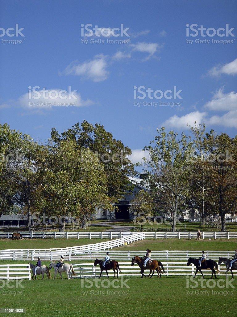 Riding Horses royalty-free stock photo