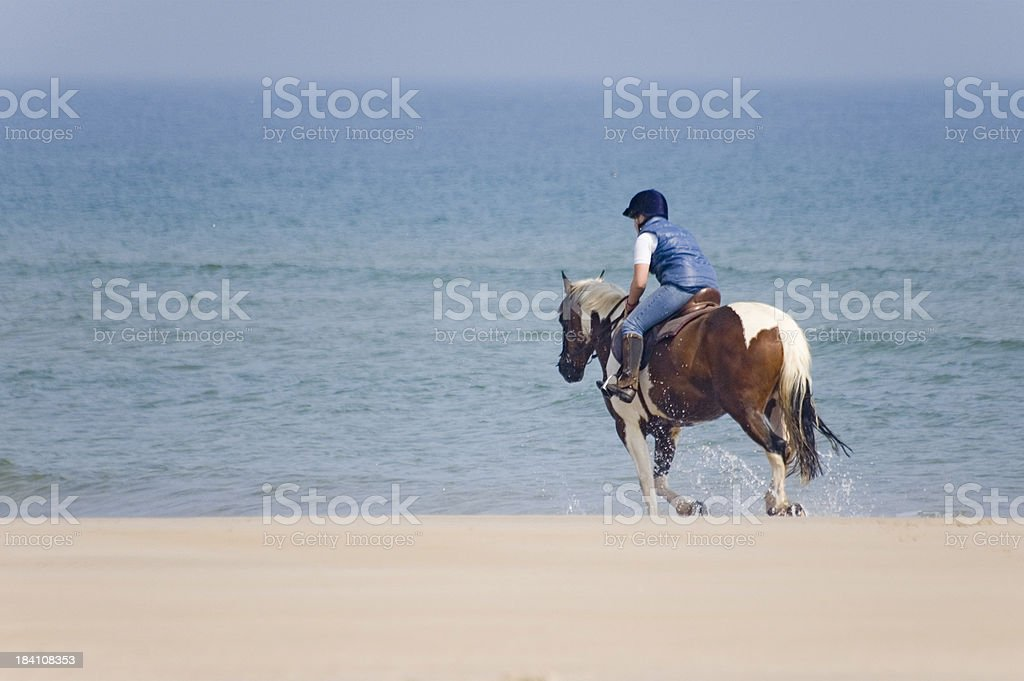 Riding on the Beach royalty-free stock photo