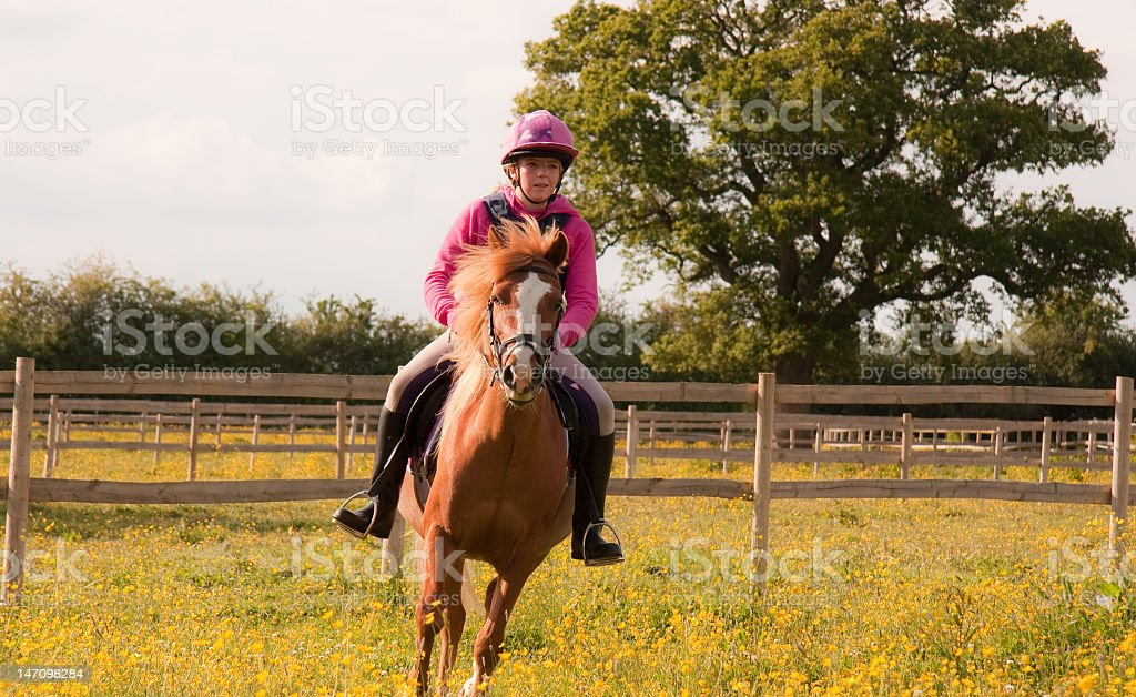 riding out -young woman and her pony in beautiful countryside. royalty-free stock photo
