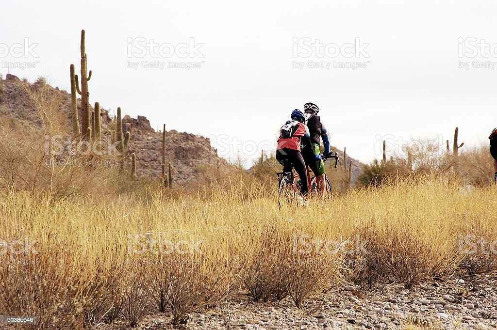 Riding tandem royalty-free stock photo