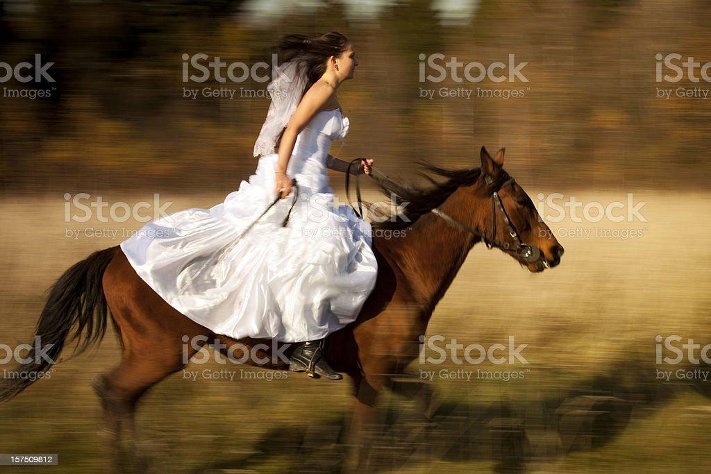 Riding wedding woman on horse royalty-free stock photo