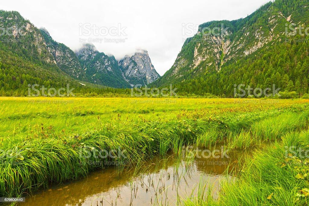 Rienza river at Toblach stock photo