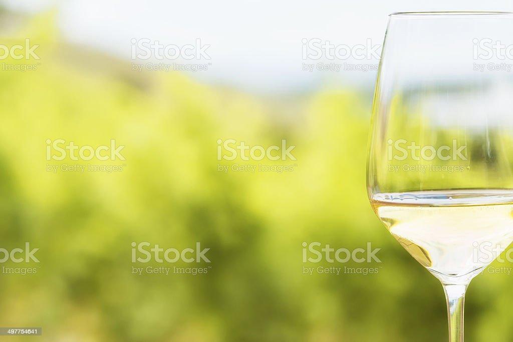 Riesling , White Wine stock photo