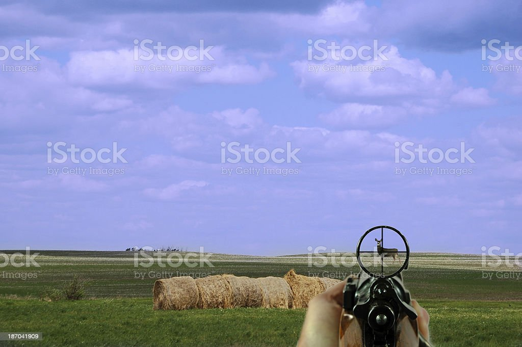 Rifle and Scope with Mule Deer royalty-free stock photo